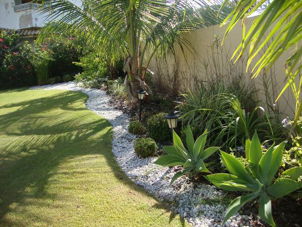 Flores, plantas, hortas e mini-hortas ? Conversa